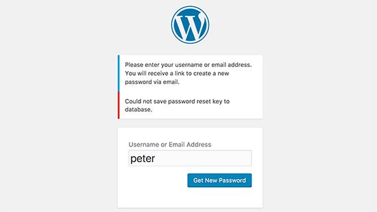 """چرا خطای """"WordPress Could Not Save Password Reset Key"""" رخ می دهد؟"""